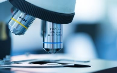 Developing a Decision-Making Framework for a Life Sciences Company's Product Launch